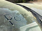 Pollen written on Car Windshield