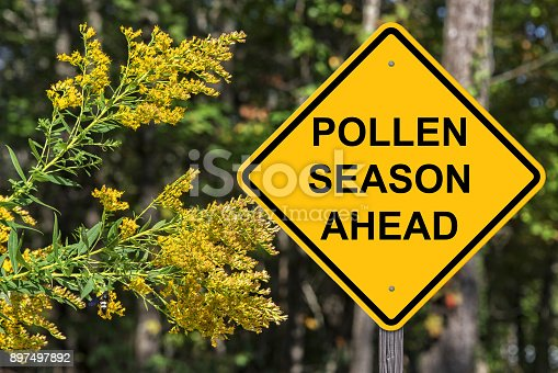 Caution Sign - Pollen Season Ahead