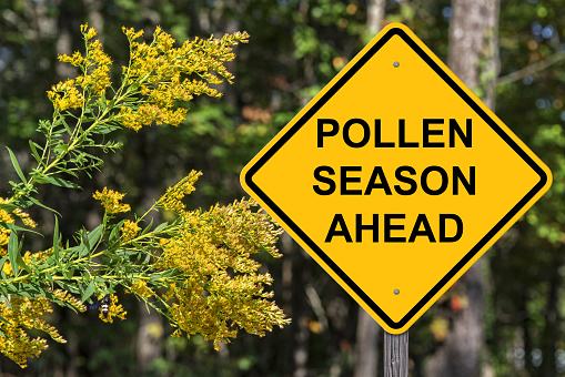 Caution Sign - Pollen Season Ahead