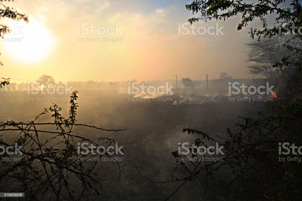 Polluted Environment stock photo