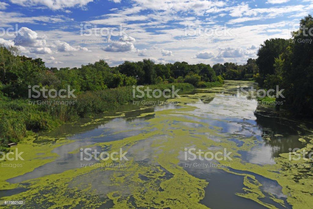 Vervuilde rivier foto