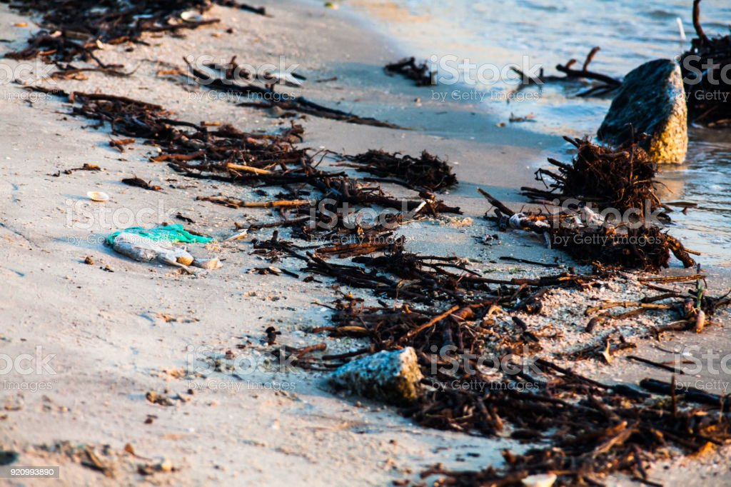 Polluted shore view for good environment awareness photo stock photo