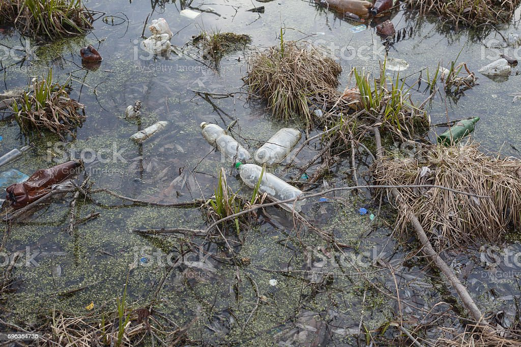 pollution of the lake with plastic bottles. ecology. royalty-free stock photo