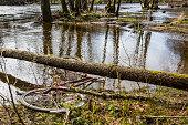 istock Pollution river 679960112
