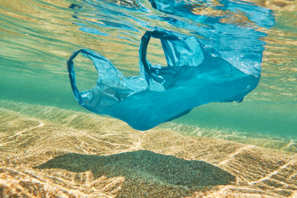 pollution, single use plastic bag floating in idyllic shallow clear sea. - trash stock pictures, royalty-free photos & images