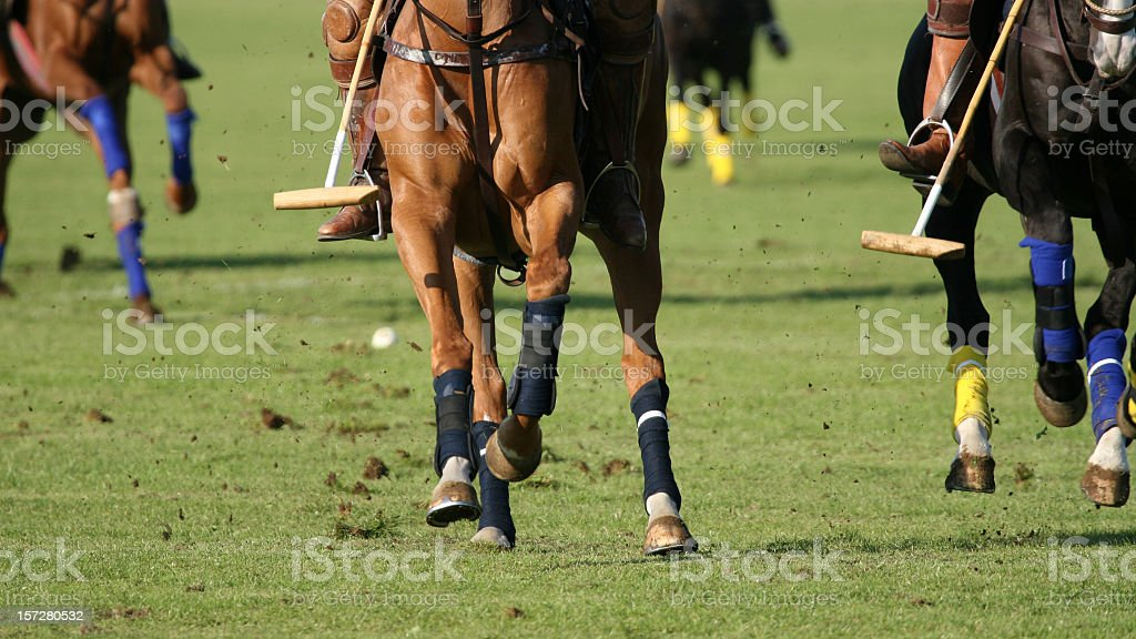 Polo action royalty-free stock photo