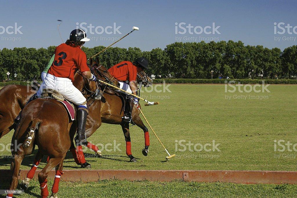 Polo Action royalty-free stock photo