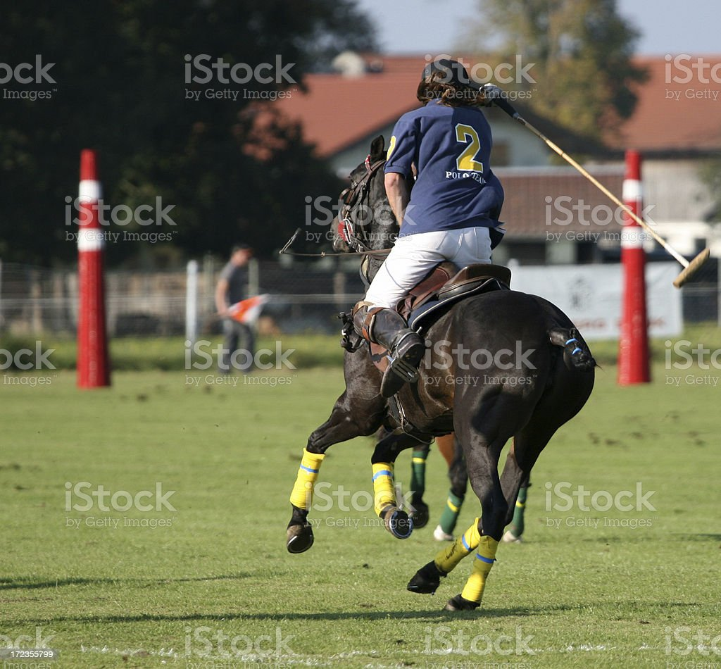 Polo competition royalty-free stock photo
