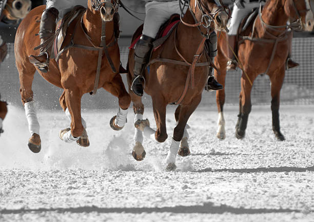 polo horses running down the field - kellyjhall stock pictures, royalty-free photos & images