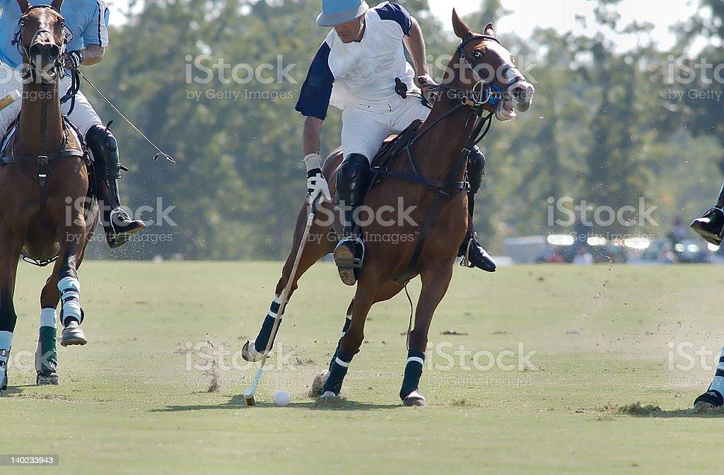 Polo player striking the ball stock photo