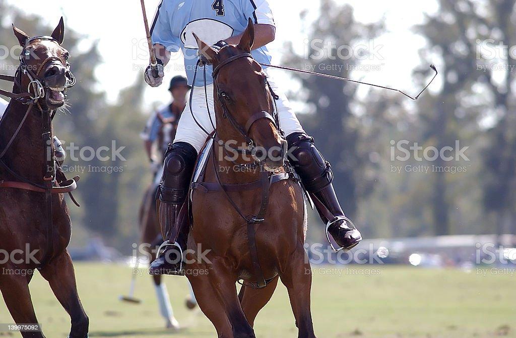 Polo rider  coming through stock photo