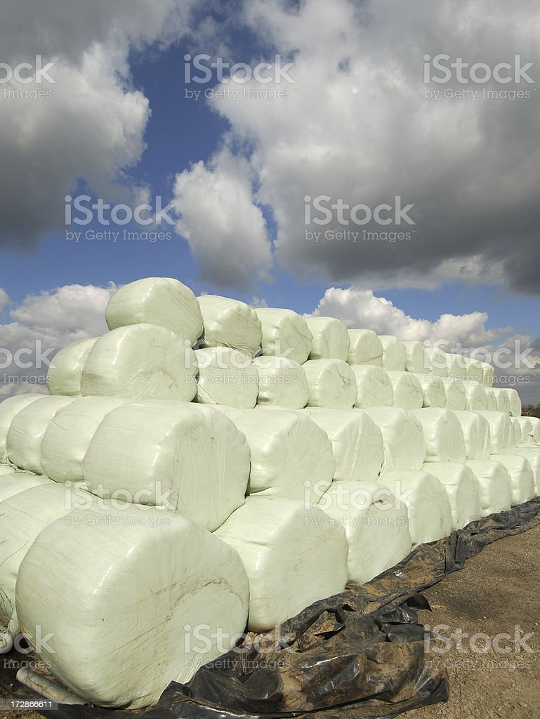 Polybales, Worcestershire royalty-free stock photo