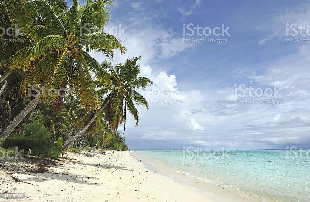 Polynesia stock photo