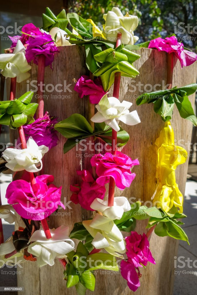 Polynesian flower necklace stock photo