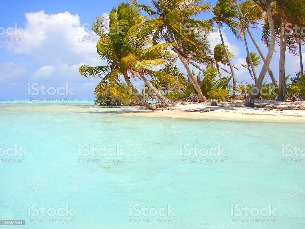 Polynesian Tropical Summer paradise: dramatic Sandy turquoise tropical beach and Green Palm Trees over water, dreamlike Bora Borá island , Tahiti motus – Idyllic French Polynesia stock photo