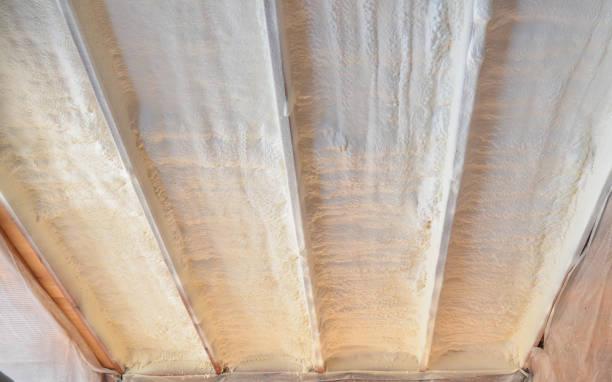 polyurea spraying, warming foam coating of roof. - gommapiuma foto e immagini stock