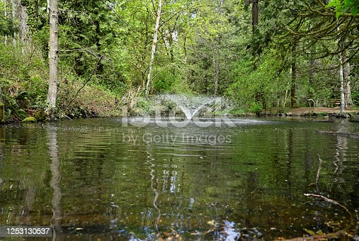 A beautiful view of aerator enriching the water with more oxygen and offering a great appeal for park users walking by nestled in the middle of the forest during springtime season with reflections in the water on a sunny day