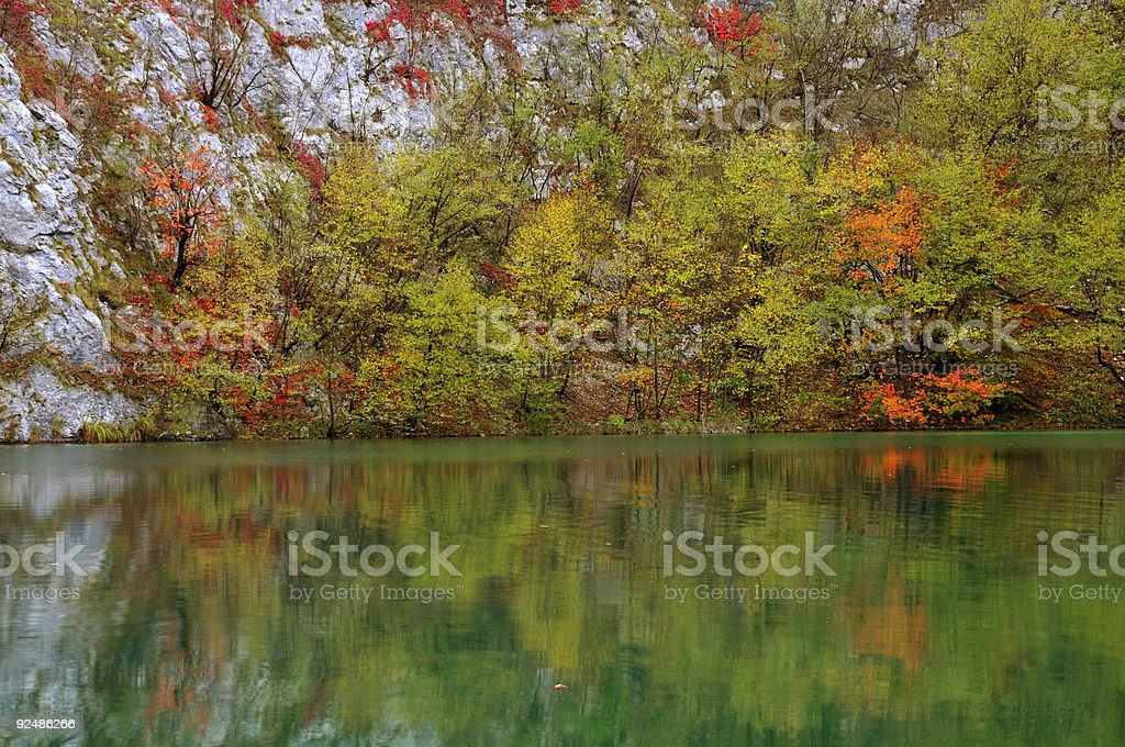 Pond and rocks in lush vegetation royalty-free stock photo