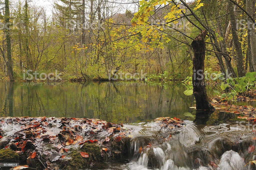 pond and small waterfall in autumn wood royalty-free stock photo