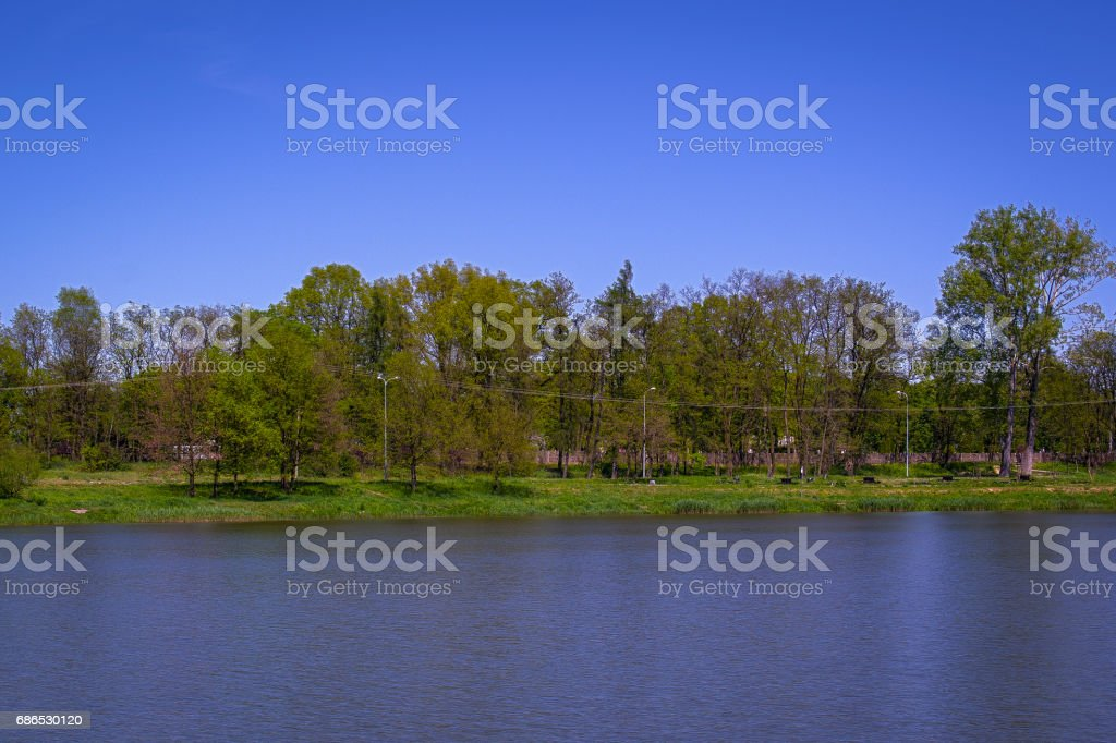 Pond as a place of rest foto stock royalty-free