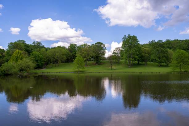 Teich, Garten und Himmel – Foto
