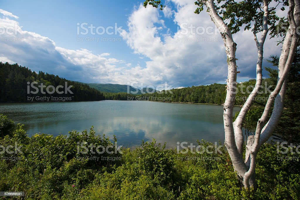 pond in Acadia National Park, Maine, USA stock photo
