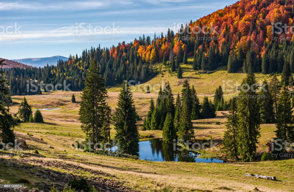 Pond in Carpathian mountains in autumn stock photo