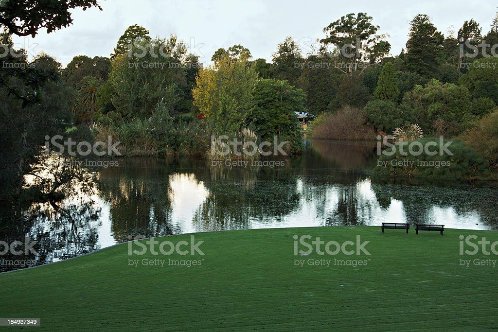 Pond in Melbourne Royal Botanic Gardens at dawn stock photo