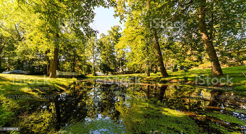 Pond in resential community in Scarsdale, Westchester county, USA stock photo