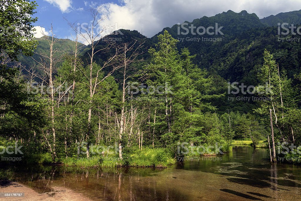 Pond in Summer Mountain Range royalty-free stock photo