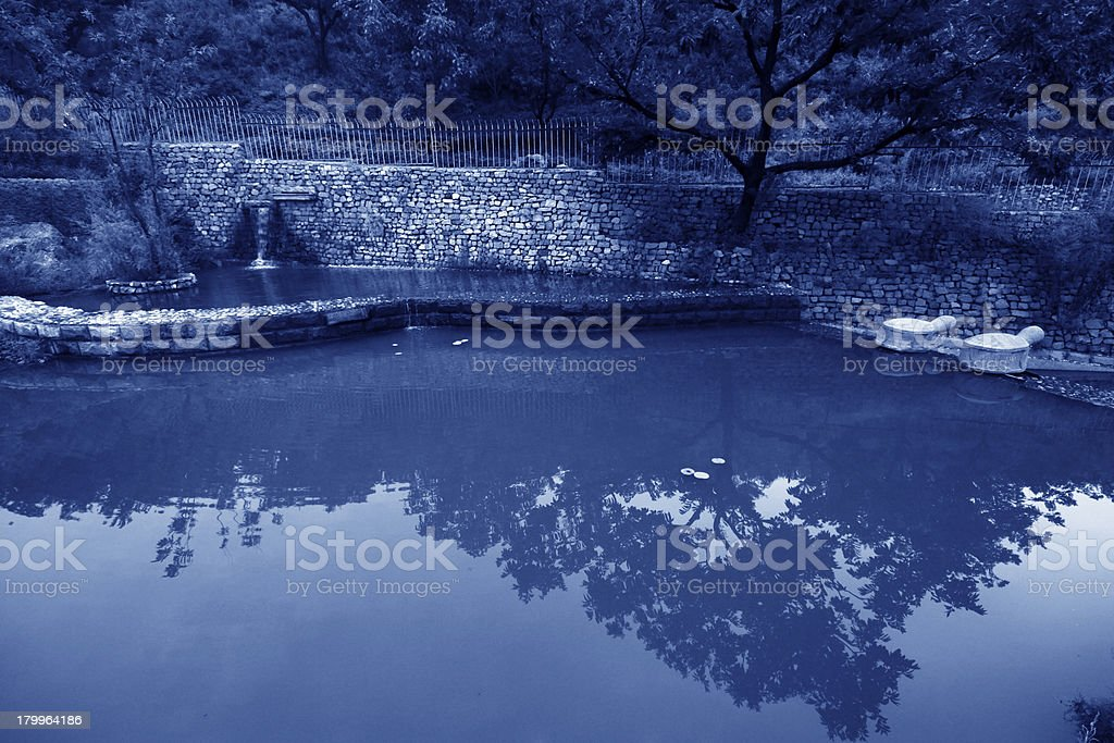 pond in the park royalty-free stock photo