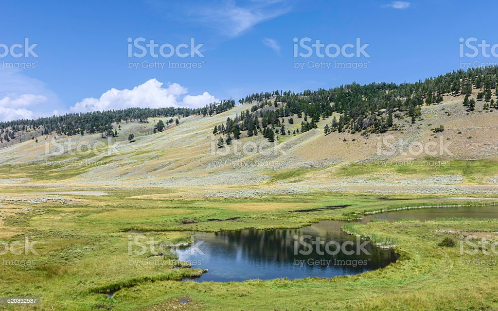 Pond in the Yellowstone National Park, Wyoming, USA. stock photo