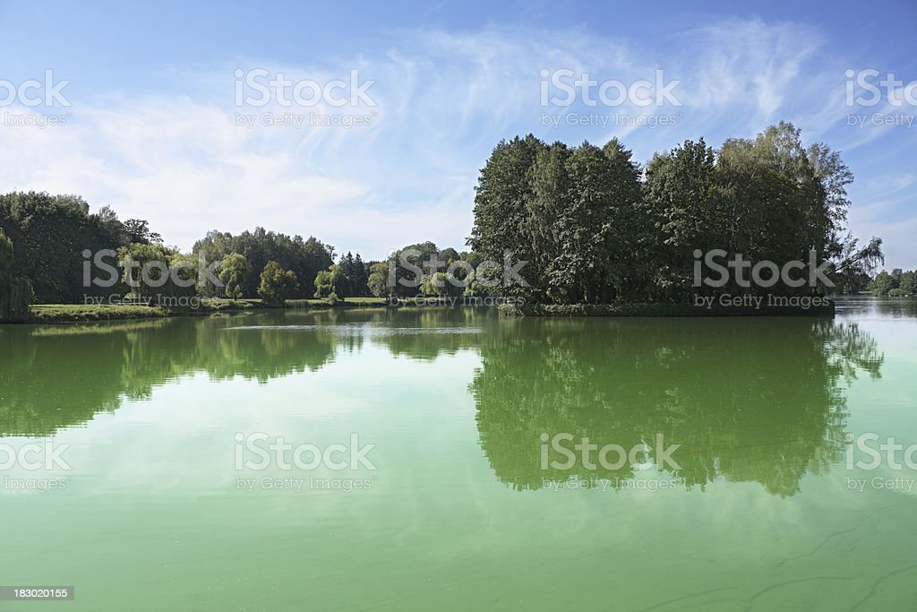 Pond royalty-free stock photo