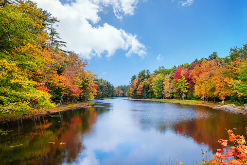 A pond surrounded by fall foliage colors on a beautiful autumn day in New England