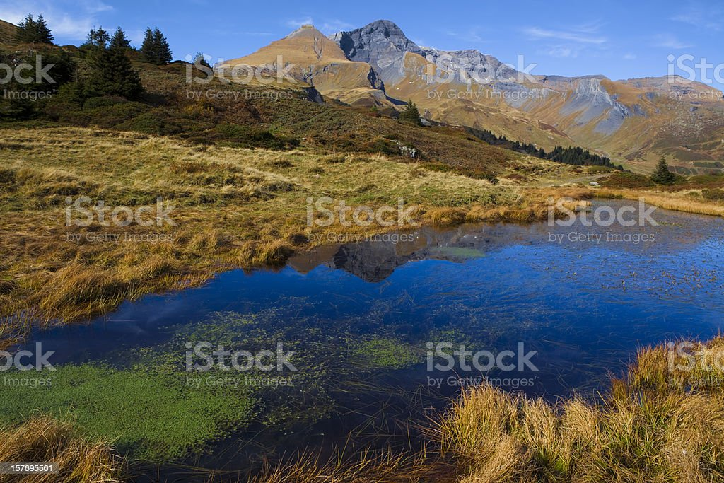Teich mit Schwarzhorn und Gemschiberg stock photo