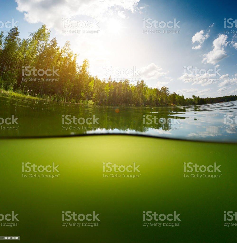 Pond with sky stock photo