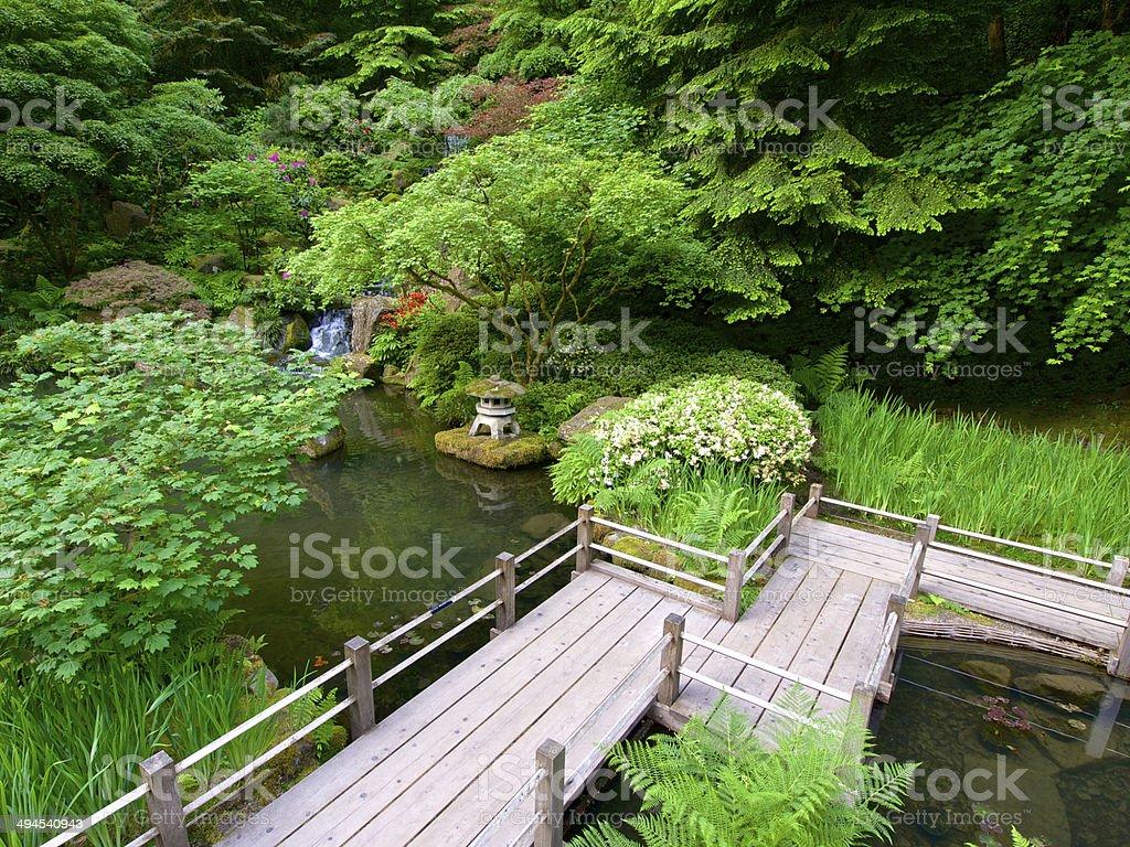 Jardin À L Américaine photo libre de droit de passerelle en bois de létang chemin