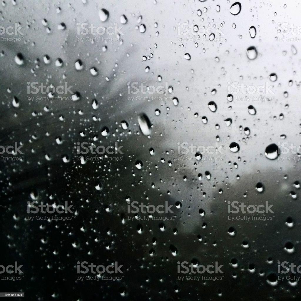 Pondering Through the Storm stock photo