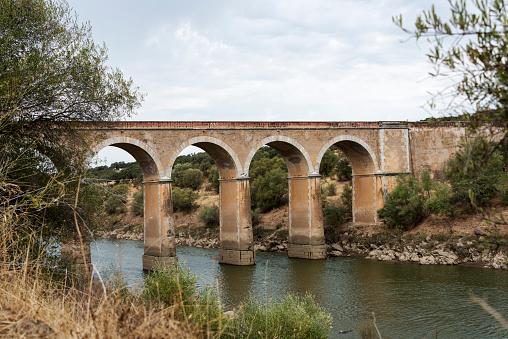 ponte de ardilla in portugal