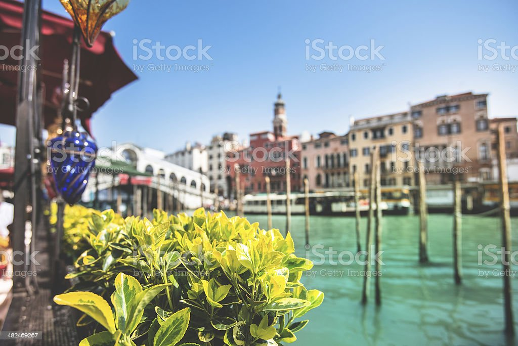 Ponte of rialto on Venice royalty-free stock photo
