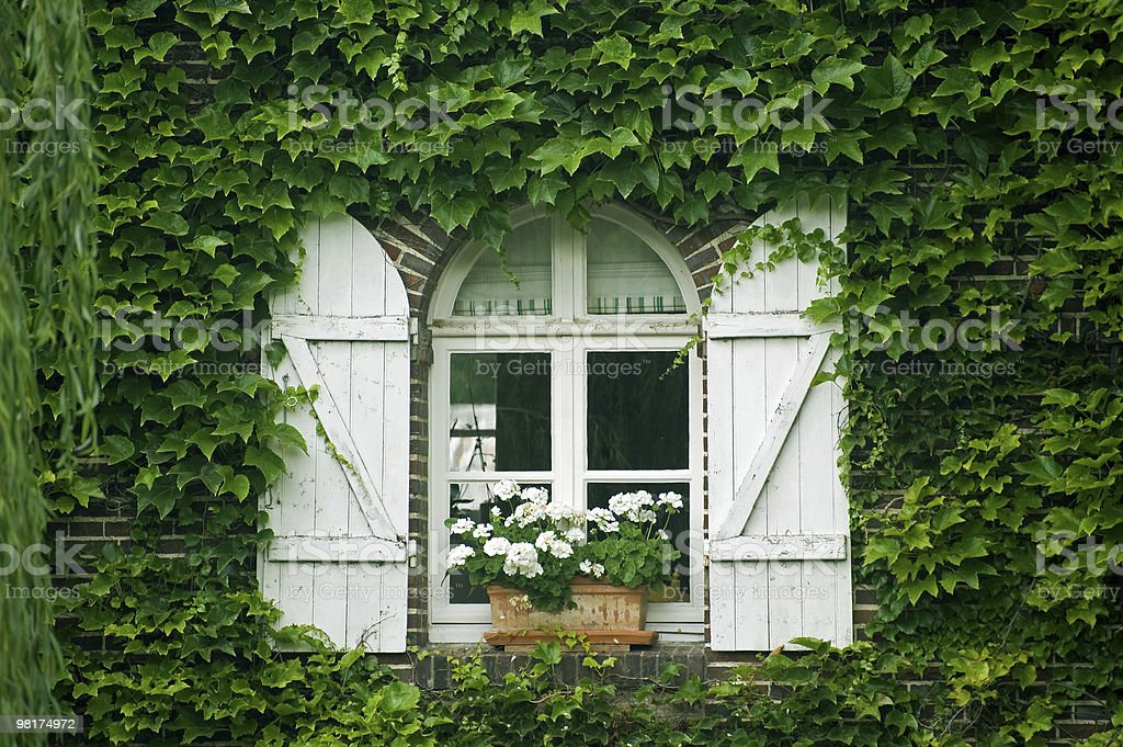 Pont-Tranchefetu (France) - Window with flowers and creeper royalty-free stock photo