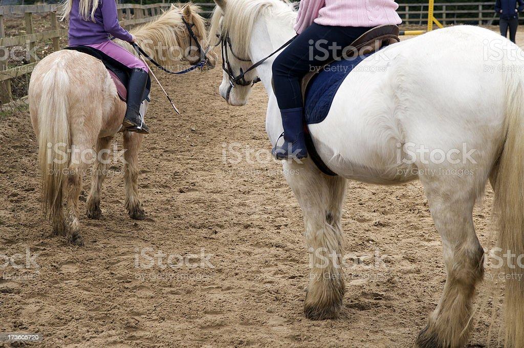 Pony Club stock photo