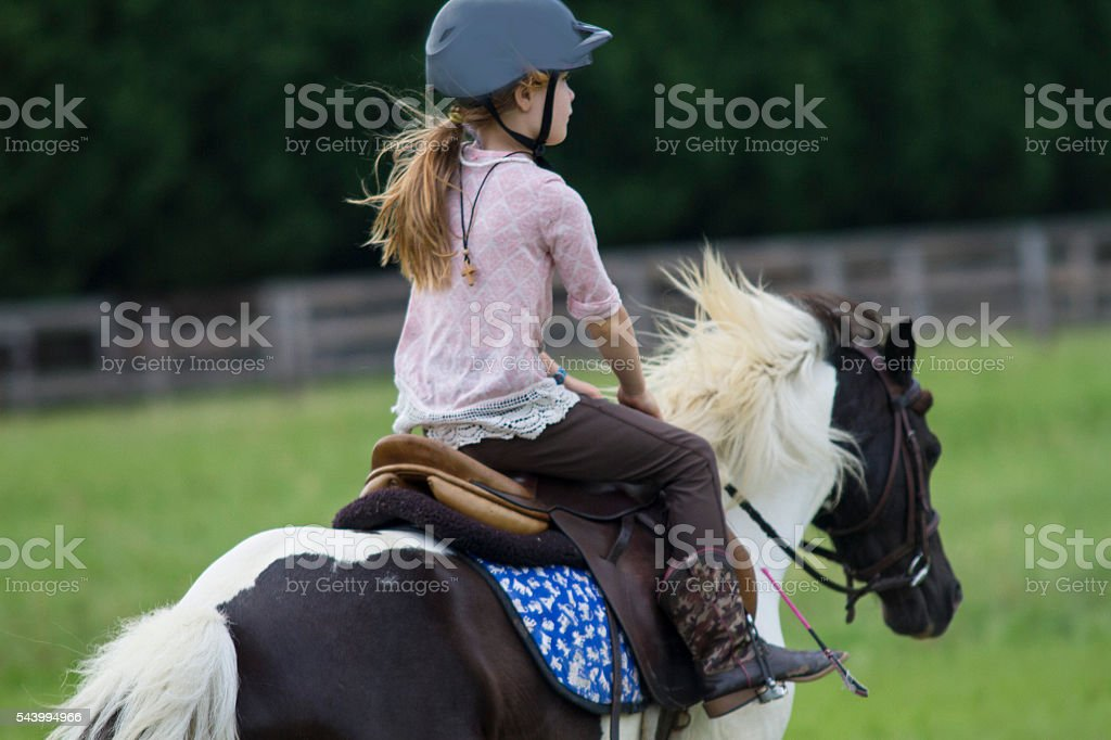 Pony Enjoyment stock photo