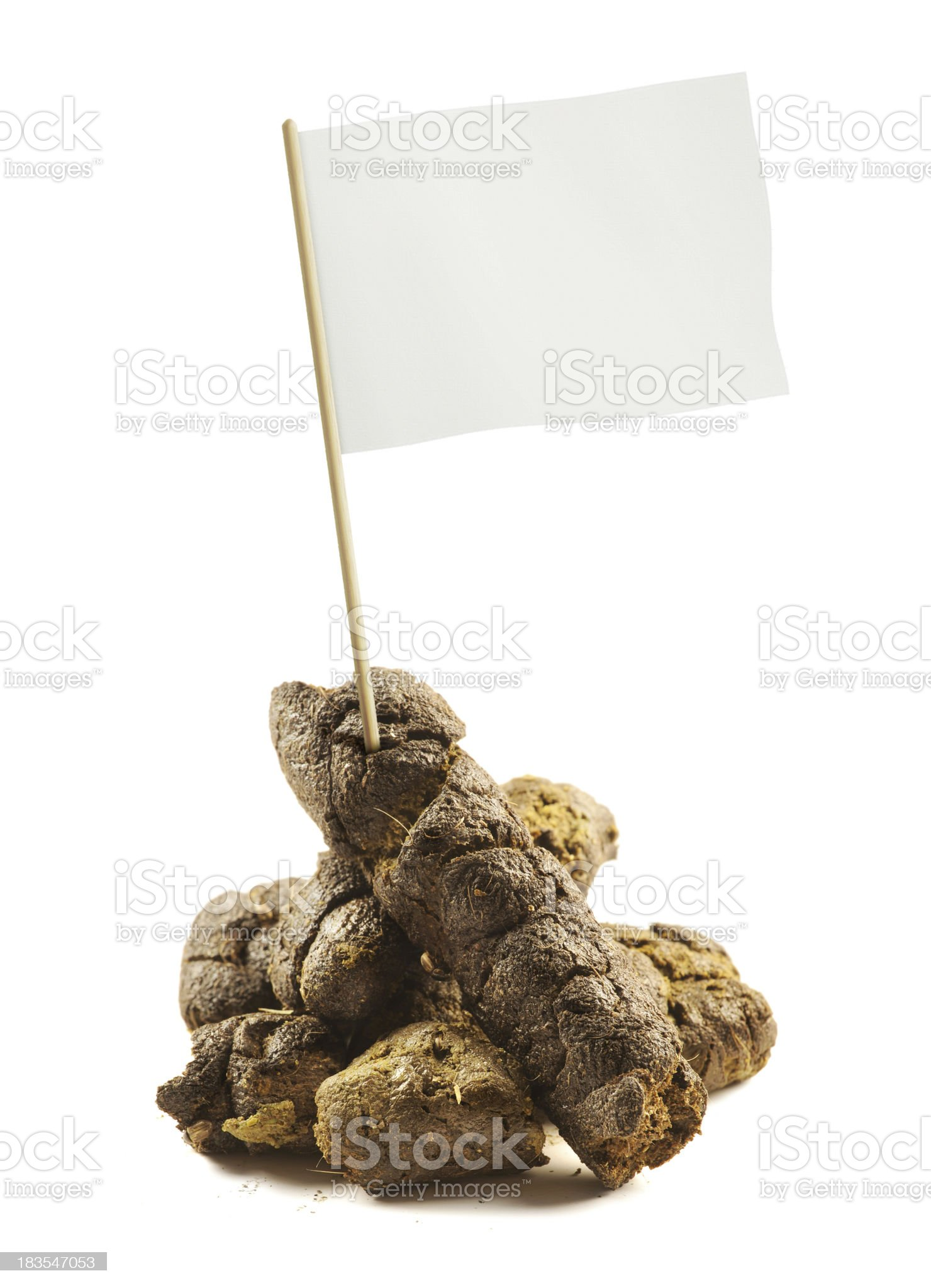 poo with flag royalty-free stock photo