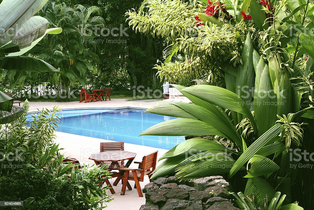 Pool in tropical setting stock photo