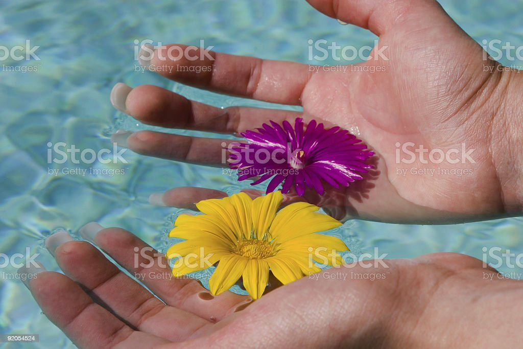 Pool of life royalty-free stock photo