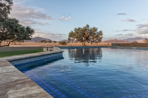 Pool Overlooking The Namib Desert Trees And Mountains Africa