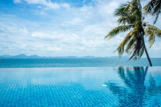 Pool overlooking the sea and coconut trees.samui Island in thailand. Pool overlooking the sea and coconut trees.samui Island in thailand. infinity pool stock pictures, royalty-free photos & images