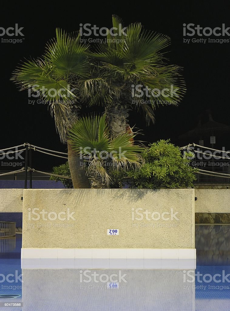 Pool palms royalty-free stock photo