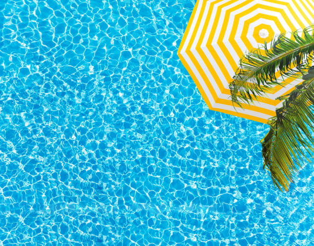 Pool surface umbrella and palm tree from above stock photo